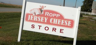 Ropp Jersey Cheese Farm