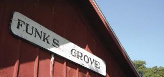 Funks Grove Pure Maple Sirup