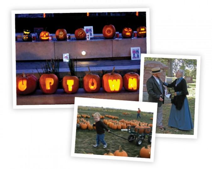 Halloween - Fall