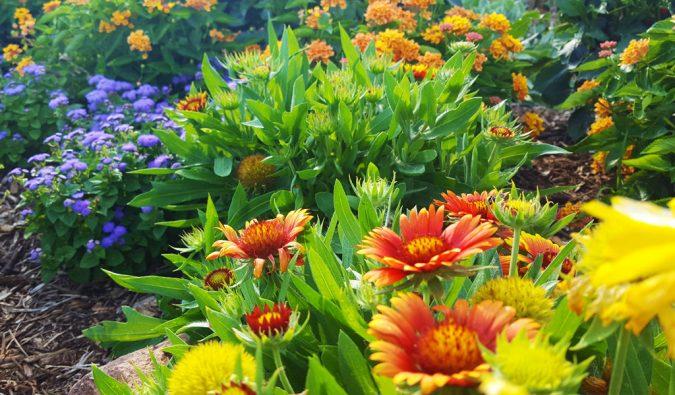 ISU Horticulture Center